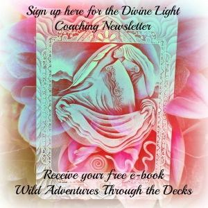 Sign up for Divine Light Coaching's Newsletter