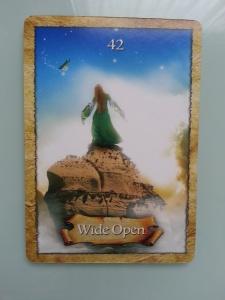 Wide Open card