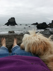 Taking a rest with my dog on the beach.