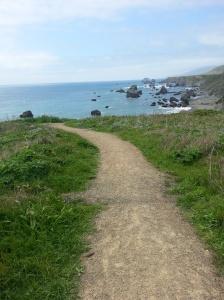 Path down to the beach at Pt. Bonita