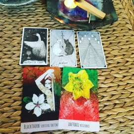Divine Guidance Sessions use a variety of card decks to tap into inner knowing