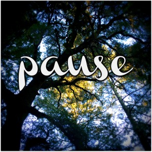 2016 Word of the Year - Pause